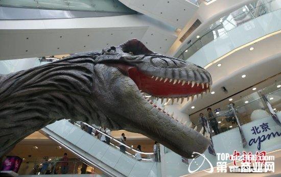 """商场变身""""动物世界"""" 惊现大恐龙,创意羊驼"""